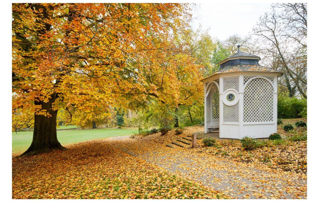 Herbststimmung im Schlosspark Herrnsheim