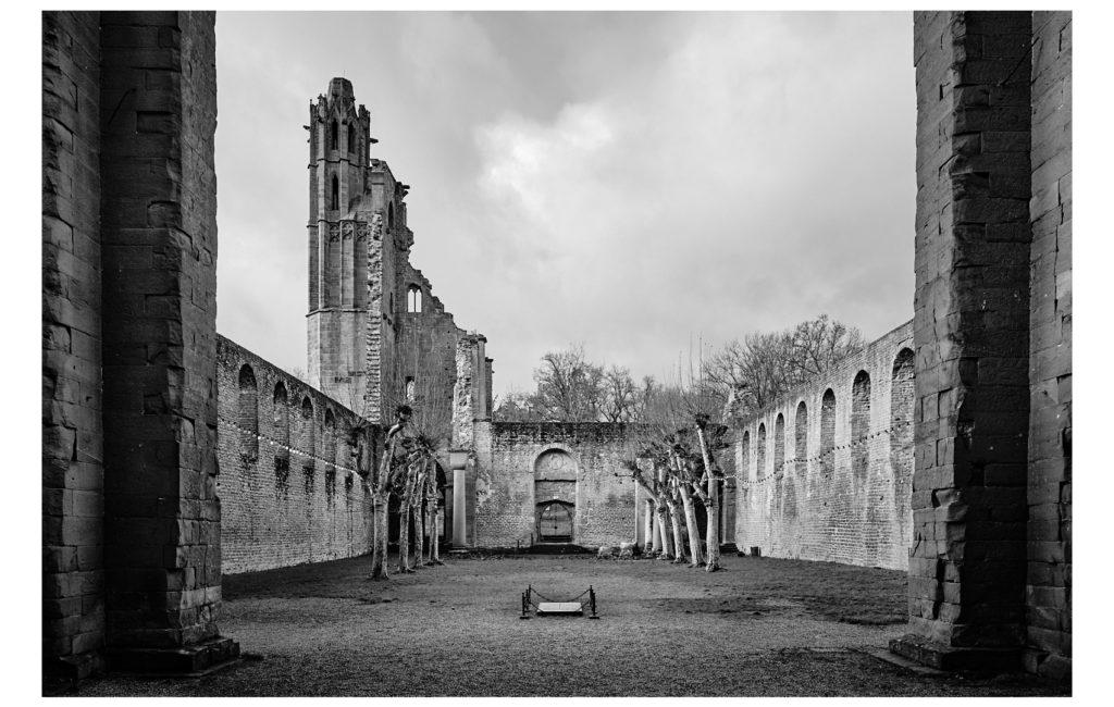 An einem trüben Morgen bei der Klosterruine Limburg