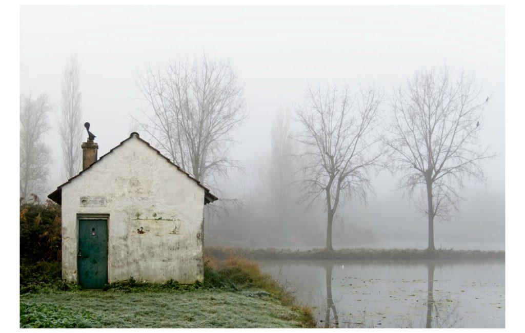 Bei dichtem Nebel im Maudacher Bruch